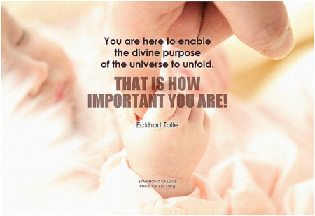 Eckhart Tolle You are here to enable the divine purpose of the universe to unfold. That is how important you are